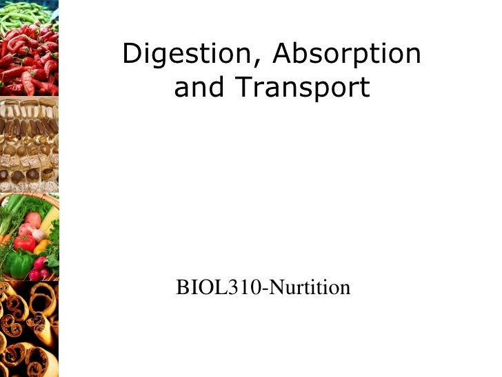 Digestion, Absorption and Transport BIOL310-Nurtition