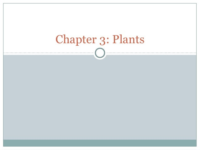 Chapter 3 plants