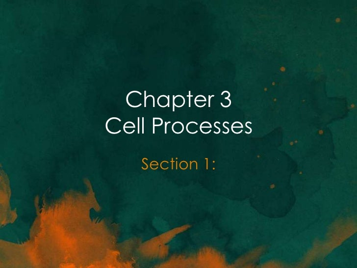Chapter 3 section 1 (chemistry of life)