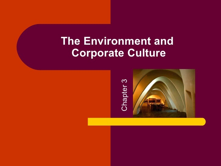 The Environment and  Corporate Culture         Chapter 3