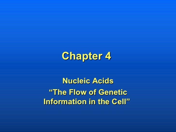 """Chapter 4     Nucleic Acids  """"The Flow of GeneticInformation in the Cell"""""""