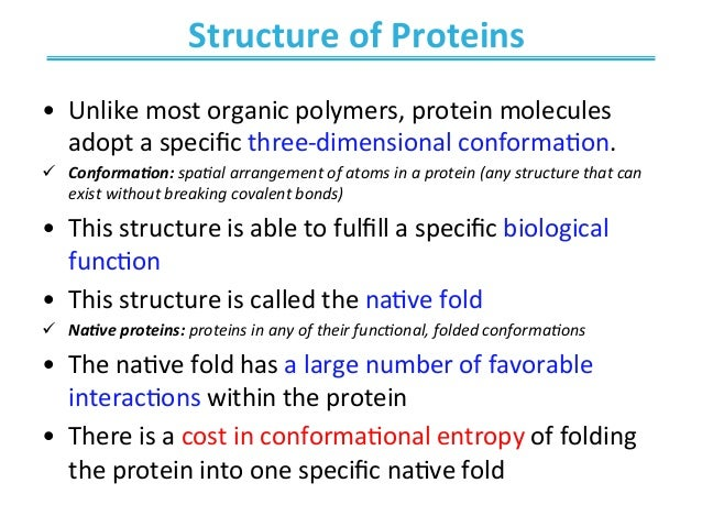 the biological description of proteins and its function Some protein functions are worthy noting: they have a structural function there are also many proteins whose biological functions are not yet known amino acids and how they form proteins 3 what unit are proteins composed of the units that make up proteins are amino acids.
