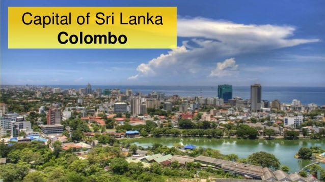 causes of conflict in sri lanka essay Religiously motivated conflicts in sri lanka sponsored link  conflict escalated in 1983 resulting in the death of 65,000 people over the next 19 years.