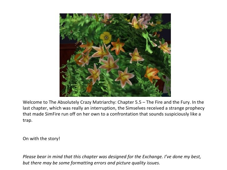 Welcome to The Absolutely Crazy Matriarchy: Chapter 5.5 – The Fire and the Fury. In the last chapter, which was really an ...