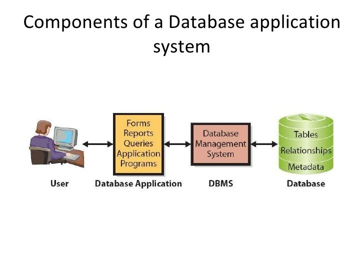 a look at database processing applications essay Below is an essay on database from and interact with other applications 3 is the result of processing raw data to reveal meaning • information.