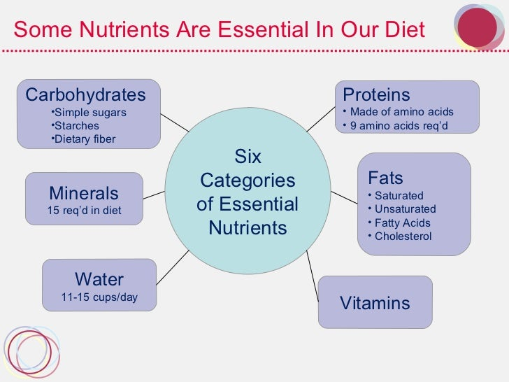 The Role of Proteins, Fats and Carbohydrates in Our Diet and Health