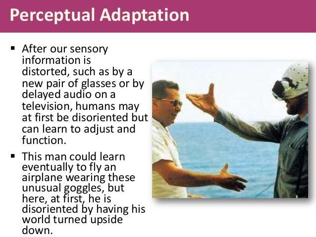 perceptual adaptation Psychology mrs stalcup period 5 juan leigh karl.