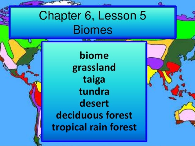 Chapter 6, Lesson 5 Biomes biome grassland taiga tundra desert deciduous forest tropical rain forest