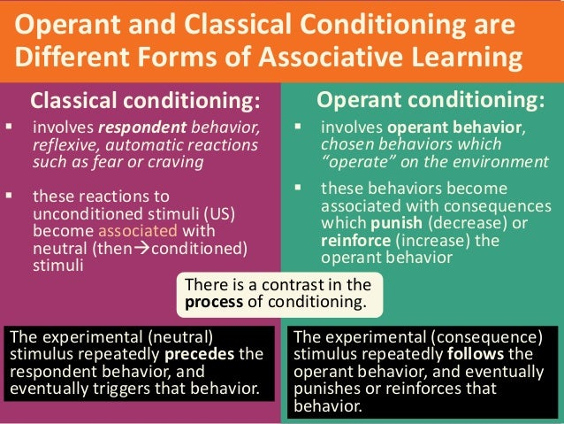 essay on classical conditioning and operant conditioning Operant conditioning essay operant conditioning page sometimes referred to as respondent conditioning and similar to classical conditioning.