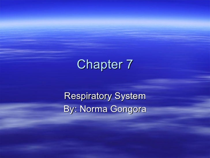 Chapter 7 Respiratory System By: Norma Gongora
