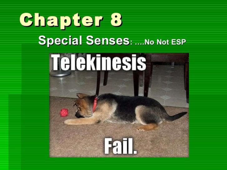 Chapter 8  Special Senses : ….No Not ESP