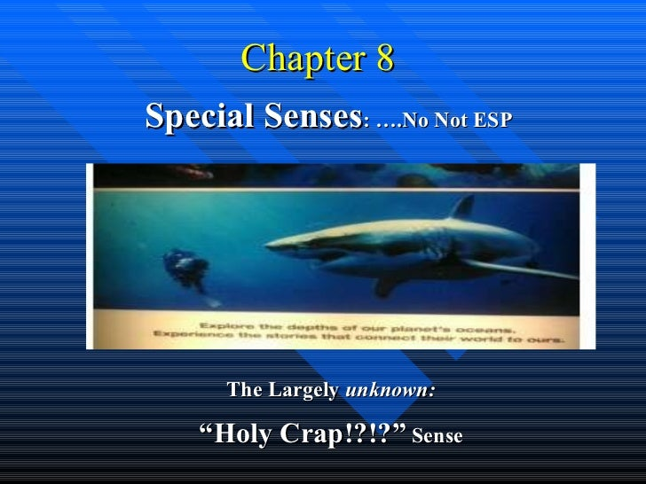 """Chapter 8  Special Senses : ….No Not ESP The Largely  unknown: """" Holy Crap!?!?""""  Sense"""