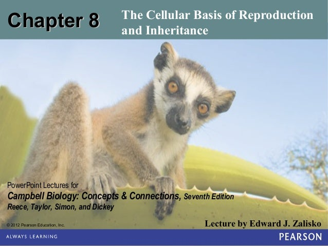 Chapter 8  The Cellular Basis of Reproduction and Inheritance  PowerPoint Lectures for  Campbell Biology: Concepts & Conne...