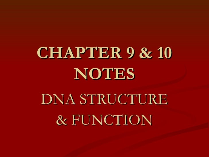 CHAPTER 9 & 10 NOTES DNA STRUCTURE &   FUNCTION