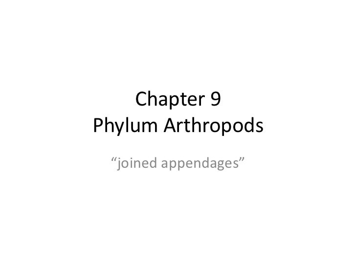 """Chapter 9Phylum Arthropods """"joined appendages"""""""