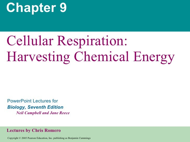 Chapter9cellrespirationppt2blank