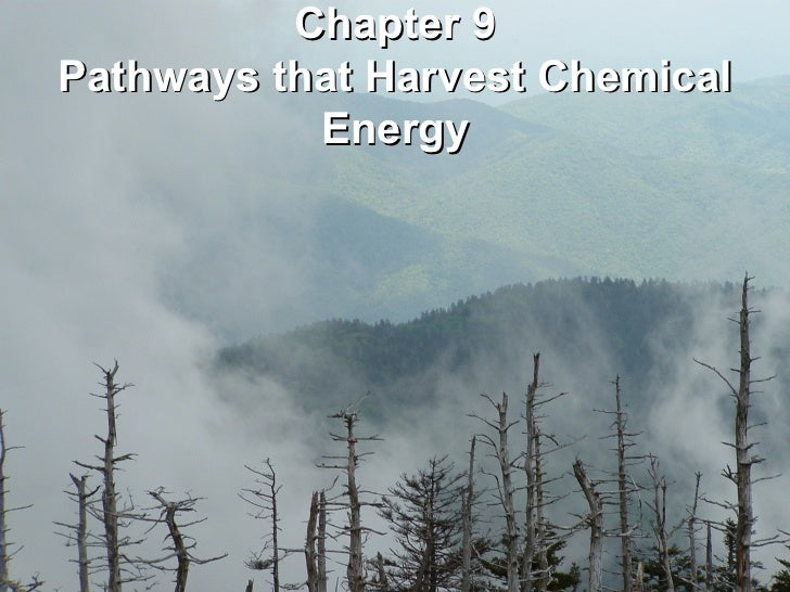Chapter 9Pathways that Harvest Chemical           Energy