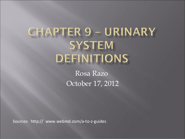 Chapter 9 – urinary system
