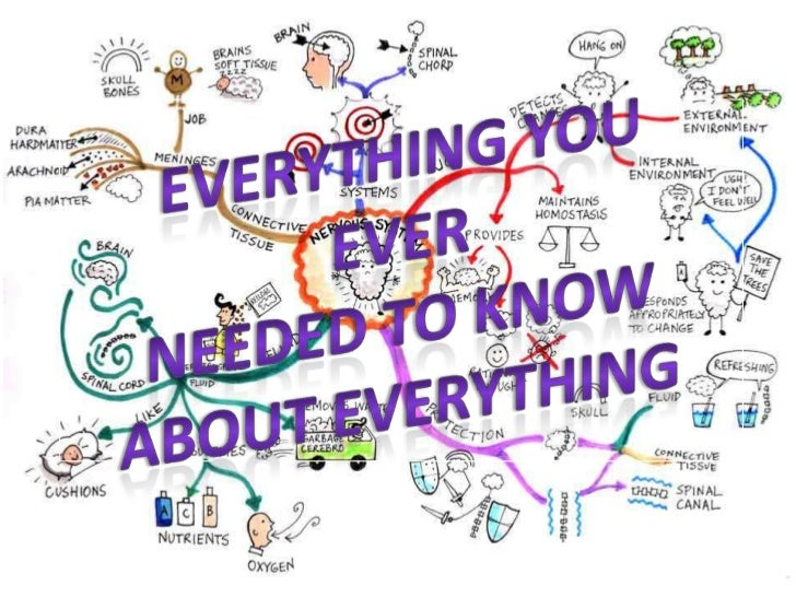 Everything you ever <br />needed to know <br />about everything<br />