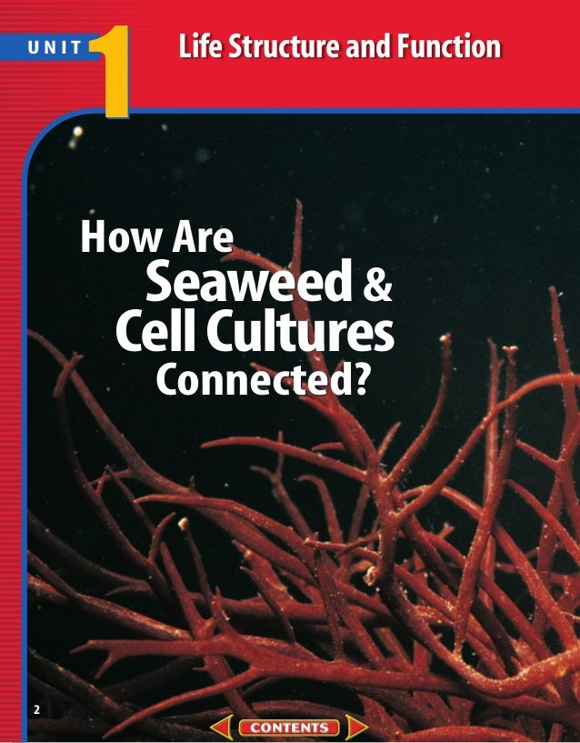 UNIT       1    Life Structure and Function    How Are        Seaweed &       Cell Cultures           Connected?2