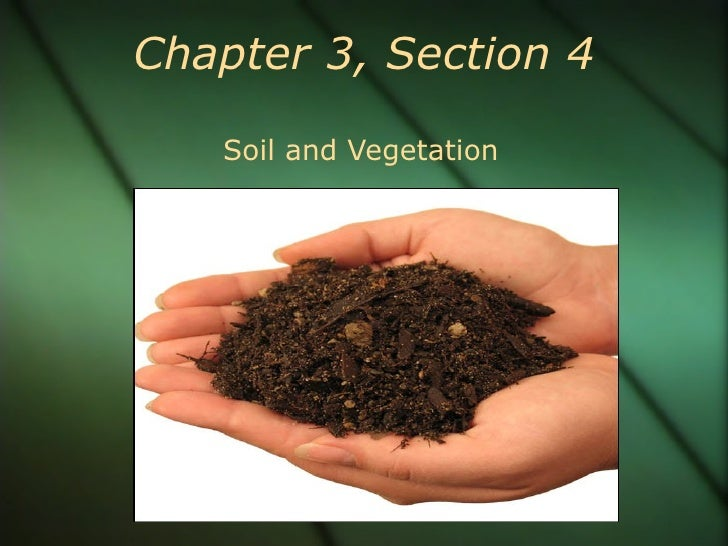 Chapter 3, Section 4 Soil and Vegetation