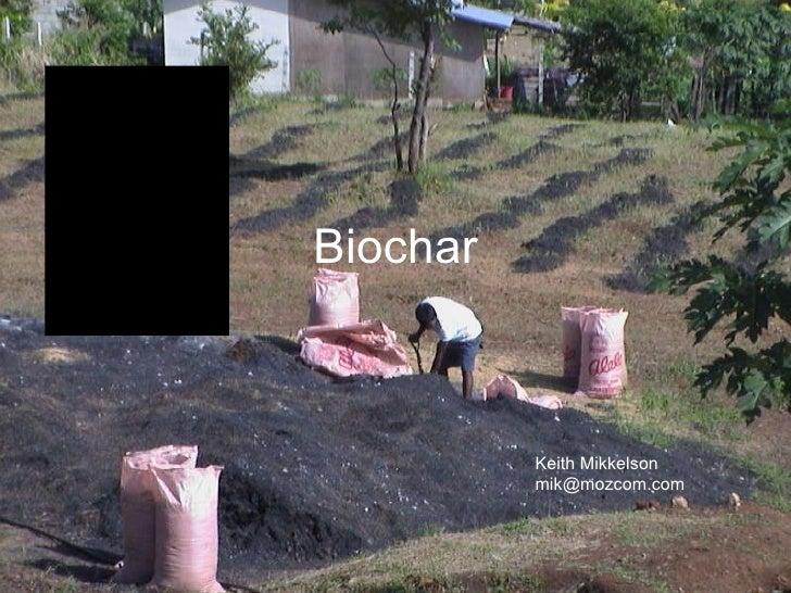 Bio Char 2