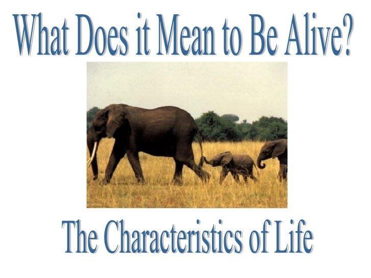 What Does it Mean to Be Alive? The Characteristics of Life