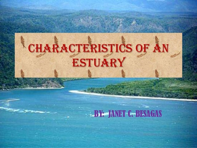 CHARACTERISTICS OF AN     ESTUARY         BY: JANET C. BESAGAS