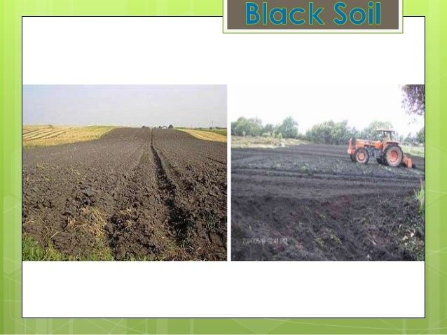 BLACK SOIL Also known as Regur or Black Cottonsoil. Dark grey to Black in color. High claycontent. Highly moist retentive....