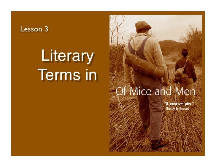 Lesson 3       Literary     Terms in