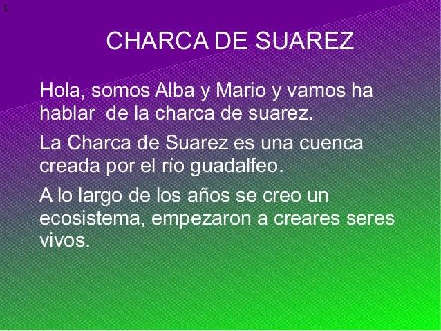 LCHARCA DE SUAREZHola, somos Alba y Mario y vamos hahablar de la charca de suarez.La Charca de Suarez es una cuencacreada ...