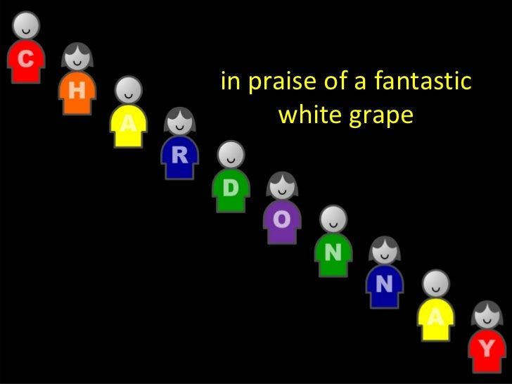 Chardonnay Marvellous Diversity Jly08