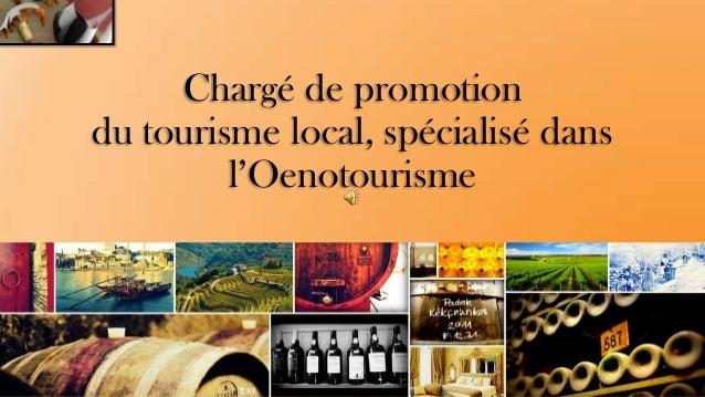 Chargé de promotion du tourisme local, spécialisé dans l'Oenotourisme