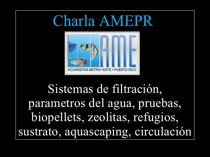 Charla AMEPR  Sistemas de filtración, parametros del agua, pruebas, biopellets, zeolitas, refugios, sustrato, aquascaping,...
