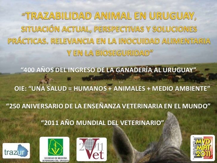 """""""Trazabilidad Animal en Uruguay, Situación Actual, Perspectivas y Soluciones Prácticas. Relevancia en la inocuidad alimentaria y en la bioseguridad"""""""