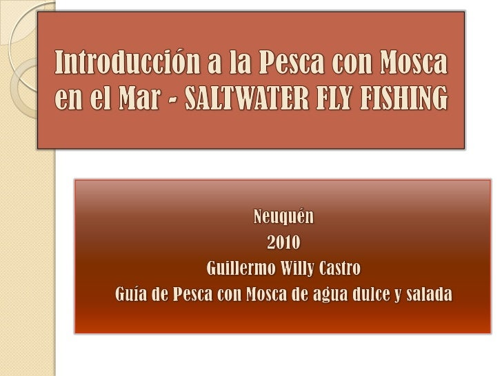 Introducción a la Pesca con Mosca en el Mar - SALTWATER FLY FISHING<br />Neuquén<br />2010<br />Guillermo Willy Castro<br ...