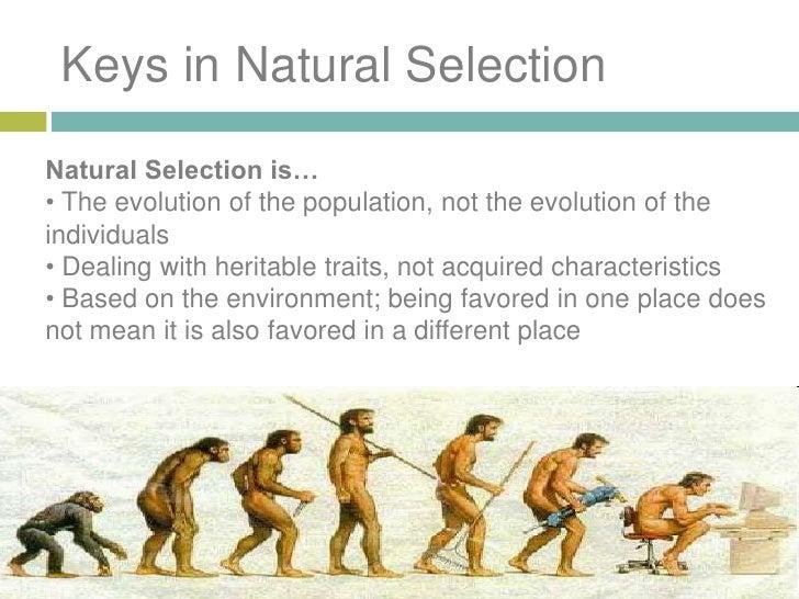 charles darwin natural selection