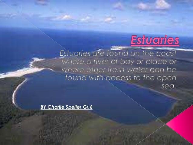 Charlie's estuaries