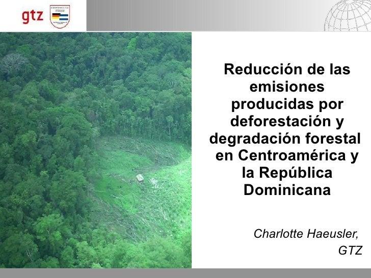 Reducción de las emisiones producidas por deforestación y degradación forestal en Centroamérica y la República Dominicana