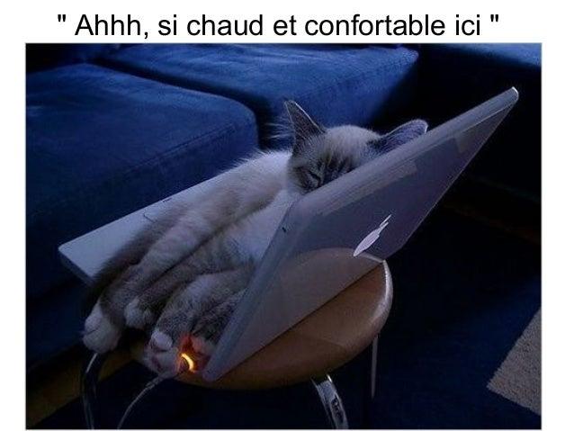 """ Ahhh, si chaud et confortable ici """