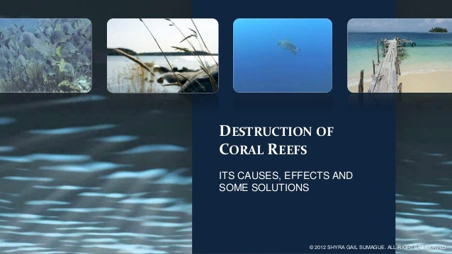 DESTRUCTION OFCORAL REEFSITS CAUSES, EFFECTS ANDSOME SOLUTIONS               © 2012 SHYRA GAIL SUMAGUE. ALL RIGHTS RESERVED.