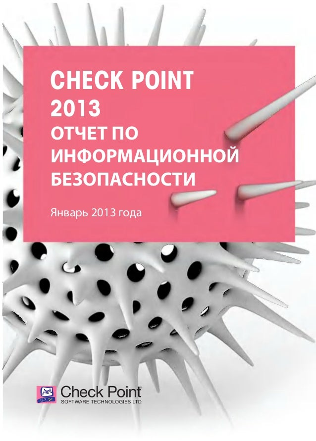 Check Point Report 2013 RU