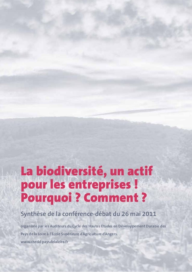 Chedd 2011 synthese conference biodiversité.vf