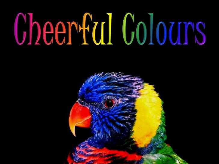 CHEERFUL  COLOURS