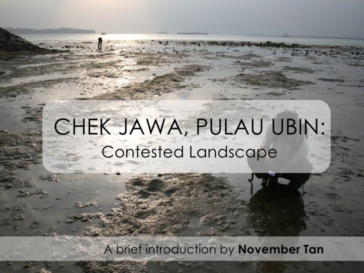 CHEK JAWA, PULAU UBIN: Contested Landscape A brief introduction by  November Tan