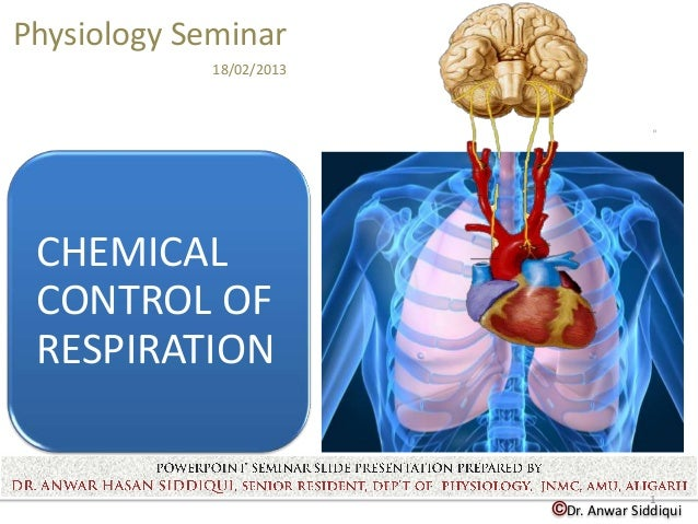 Physiology Seminar             18/02/2013 CHEMICAL CONTROL OF RESPIRATION                                        1        ...