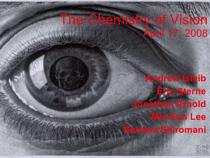 The Chemistry of Vision April 17, 2008 Andrew Isleib Eric Sterne Jonathan Arnold Min Eun Lee Samara Shiromani