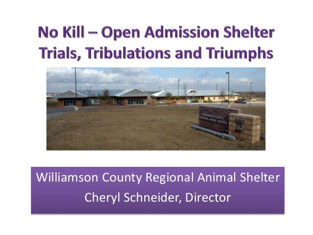 No Kill Open Admission Shelter – trials, tribulations and triumphs
