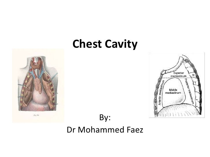 Chest Cavity<br />By:<br />Dr Mohammed Faez<br />
