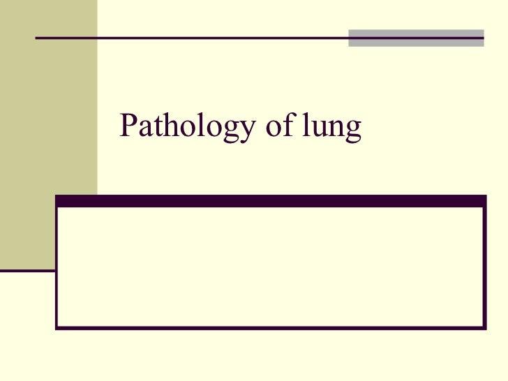 Chest x ray pathology